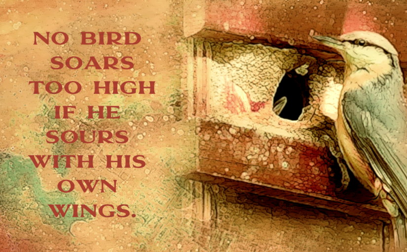 Picture Tubes: Birdhouses