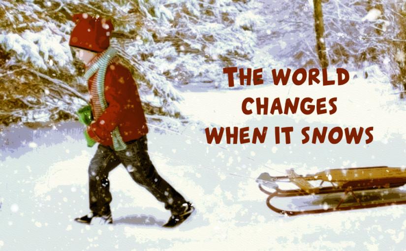 Facebook Covers: WinterScenes